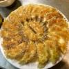 【春キャベツ餃子】絶対失敗しない餃子の焼き方を布教したい【ギョウザ】