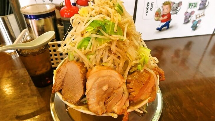 『麺屋 歩夢』小ラーメンをヤサイマシマシにした結果@淵野辺本店