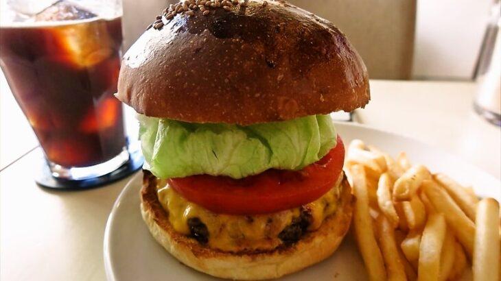 e-burgersレッドチェダーチーズバーガー2