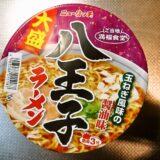 『ニュータッチ 大盛八王子ラーメン』を雑に実食レビュー!