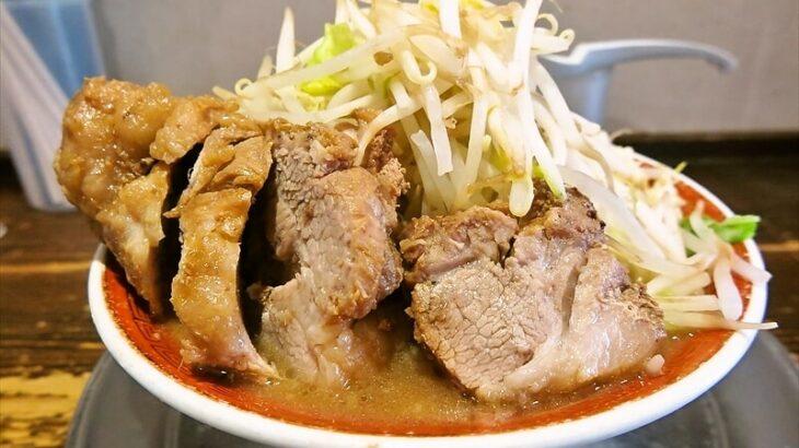 麺でる小ラーメン豚2