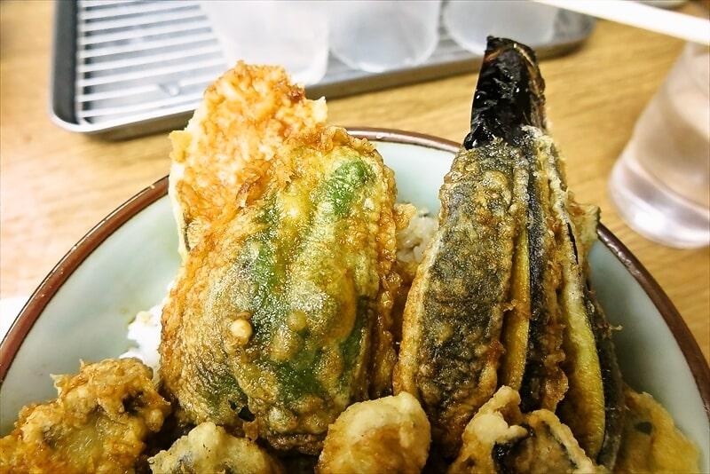 豊野丼かき天丼2
